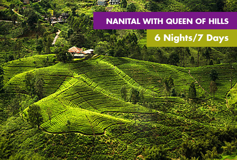 Nanital With Queen Of Hills 6 Nights / 7 Days
